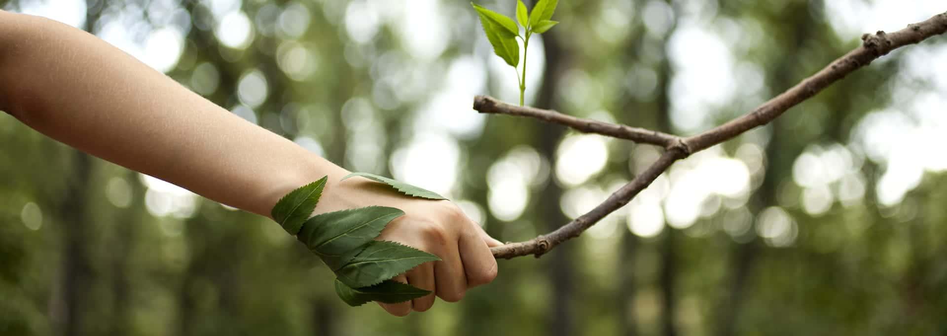 Mains - 10 Astuces pour prendre soin de ses mains cet hiver - Dermophil